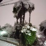 横浜も大雪だ