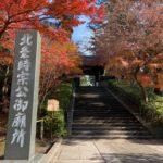 12月の鎌倉、紅葉きれい